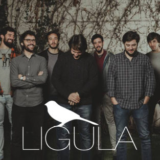 Local Sounds - Ligula